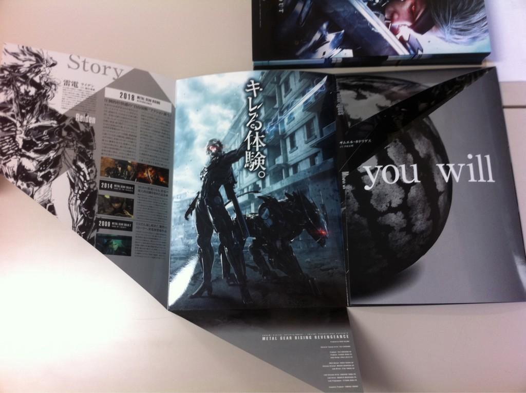 TGS-2012-Rising-Brochure-2