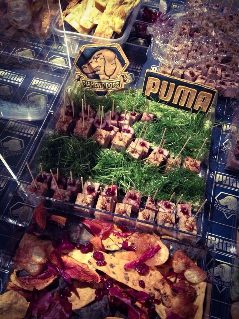 MGS-Puma-Press-Event