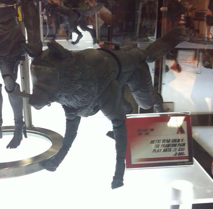 SDCC-MGSV-TPP-Figure-D-Dog