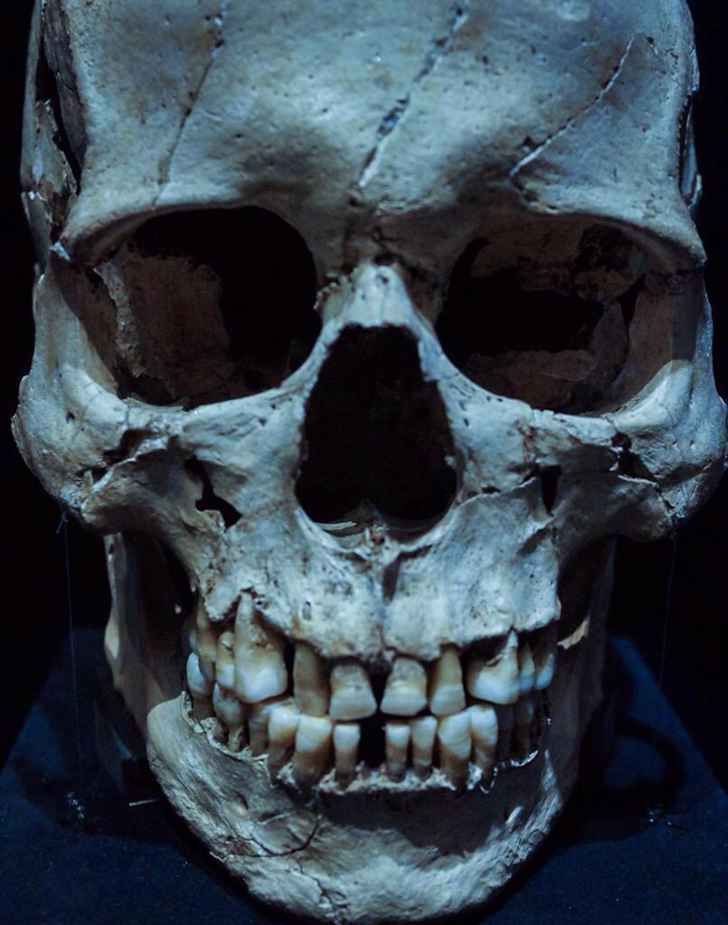 Hideo-Kojima-Human-Skull