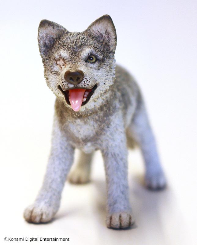 Gecco-Puppy-DD-1